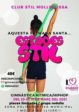 Club Stil estades.png