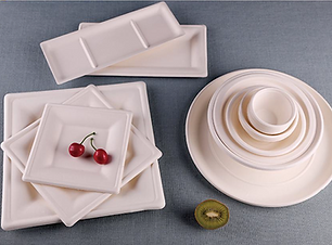 Biodegradable Food Trays