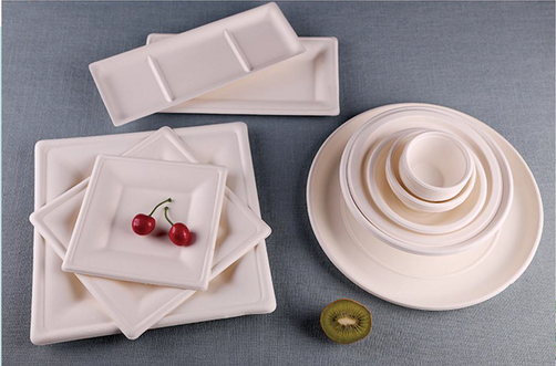 Plates & Trays Main Pic.PNG