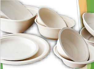 Biodegradable cups and bowls