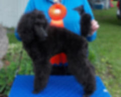 Oprah at Brome_0659.jpg