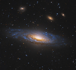 Deerlick Galaxy