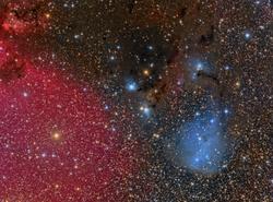 IC 447