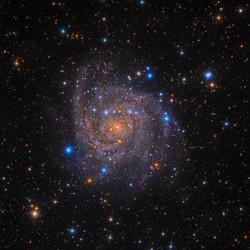 The Hidden Galaxy