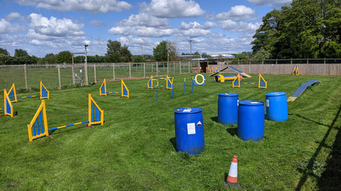 Fun Activity Field