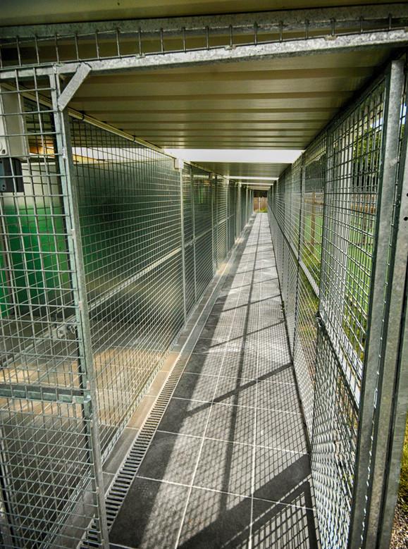Deluxe Kennel Corridor
