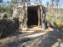 Cabane des récolteurs de dattes