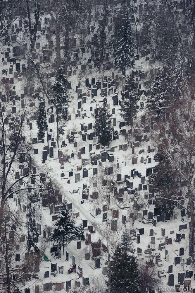 Вид на Донское кладбище