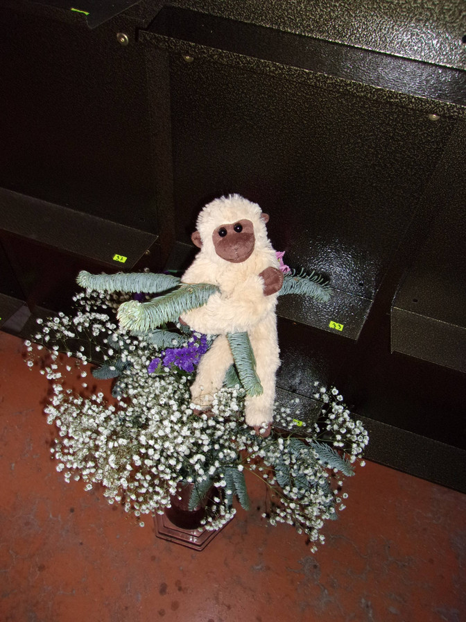Год обезьяны в колумбарии