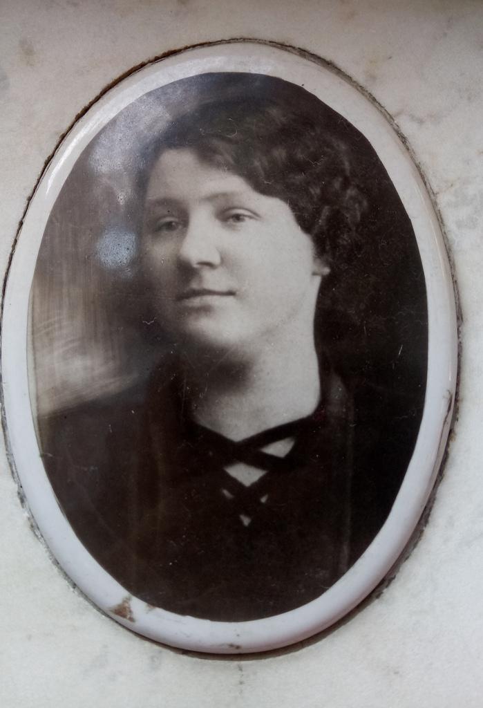 София 1890-1965