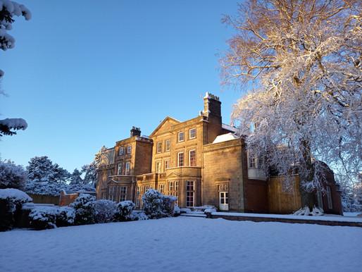 Snow Beautiful!