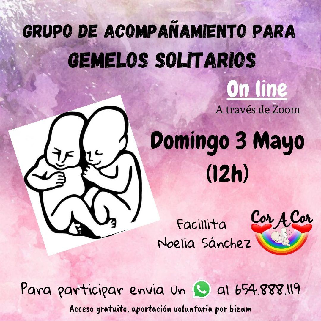 Grupo_de_Acompañamiento_para_Gemelos_So