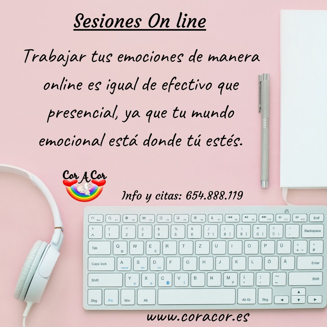 Copia de Sesiones On line