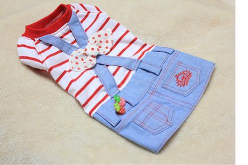 Strawberry overall denim dress