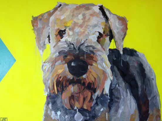 Ted the Airedale Terrier