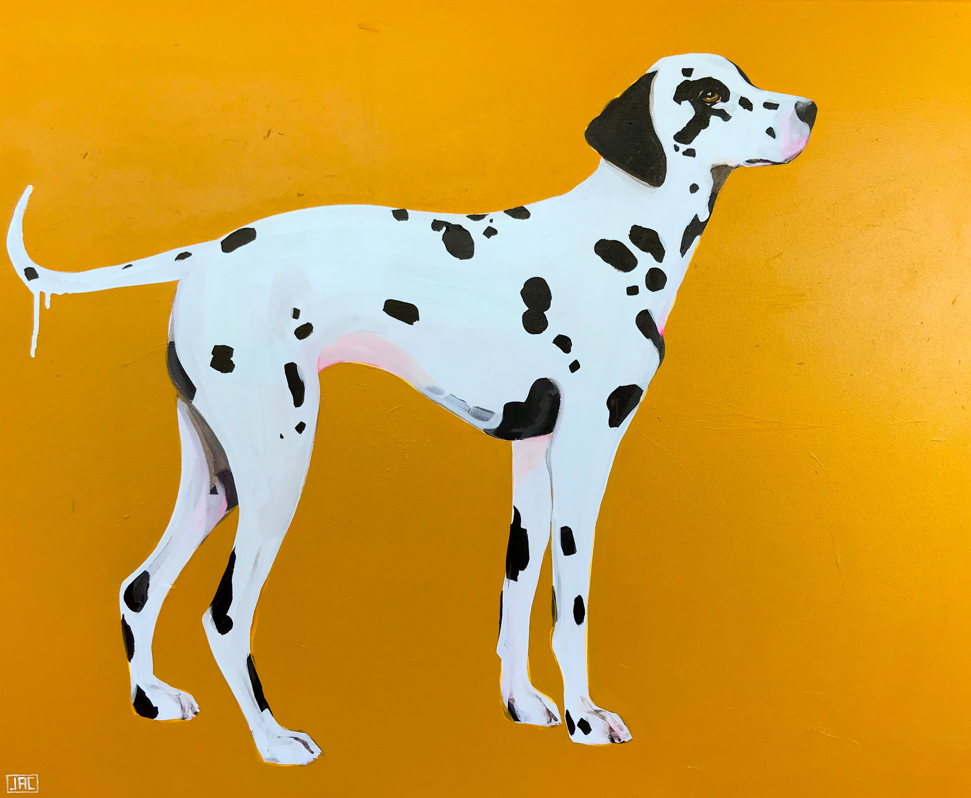 WAITING. DALMATIAN. GOLD