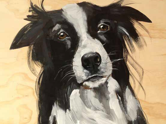 Collie (Wood)