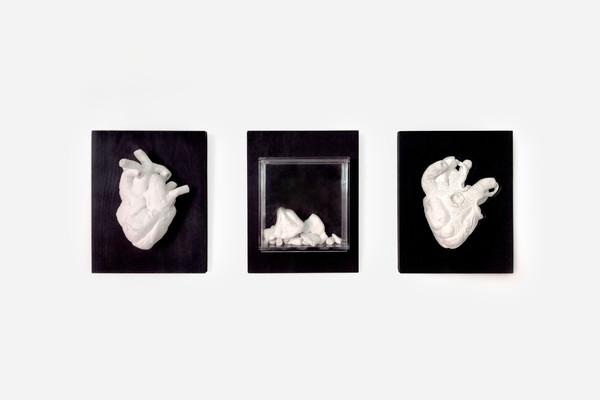 Coeur-frontal.jpg