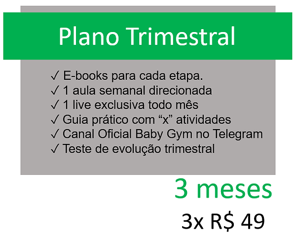 plano trimestral.png