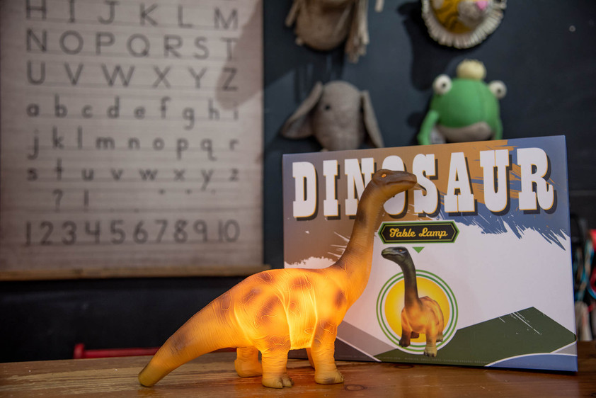 Commercial-Photography-Branding-Toy-Shop