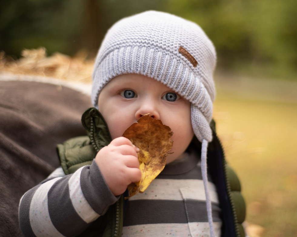 baby-portrait-sitter-session-photo-fall-