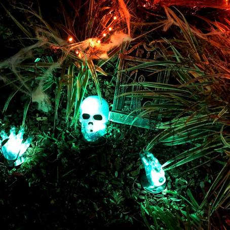 Halloween in Palo Alto