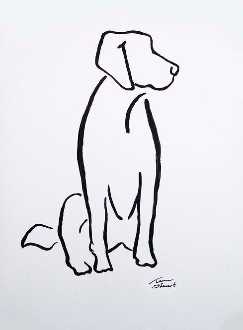 Dog Contour Line Painting