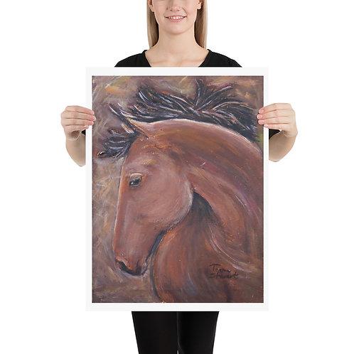 Bay Horse Head Fine Art Print