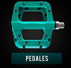 PEDLAES.png