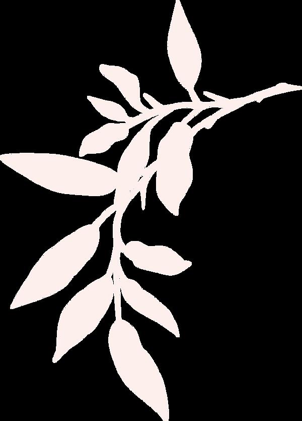新橋・銀座のタイ古式マッサージ店「ワンディーディー スパ & タイマッサージ」 - Leaves 12