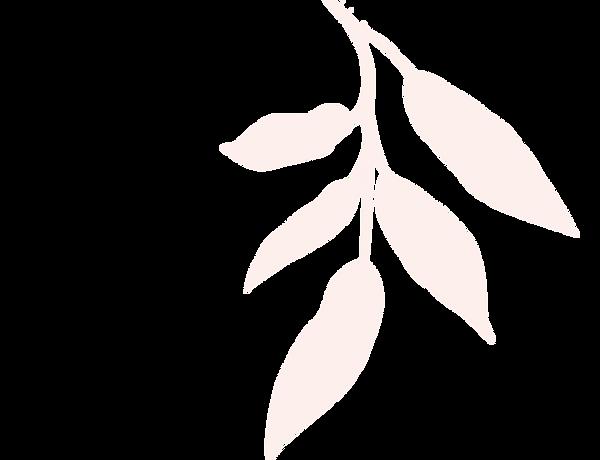 新橋・銀座のタイ古式マッサージ店「ワンディーディー スパ & タイマッサージ」 - Leaves 3
