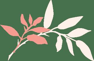 新橋・銀座のタイ古式マッサージ店「ワンディーディー スパ & タイマッサージ」 - Leaves 5