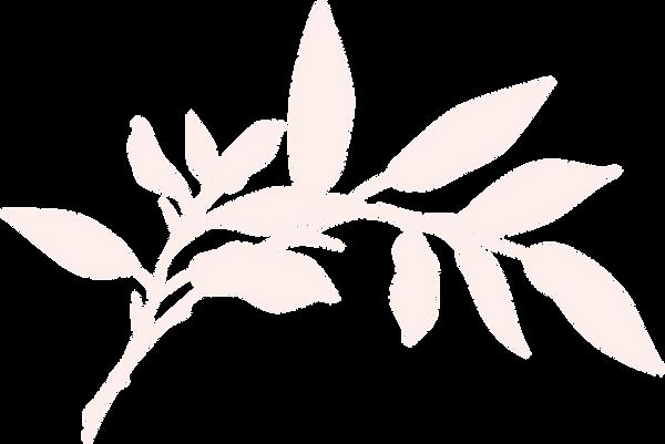 新橋・銀座のタイ古式マッサージ店「ワンディーディー スパ & タイマッサージ」 - Leaves 4