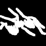 Thai_Massage_Illustration_2 シートン SITONG 新大久保 大久保 新宿 タイマッサージ タイ古式マッサージ