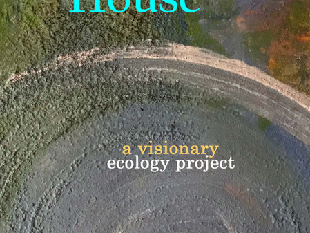 Anthology House: a visionary ecology project