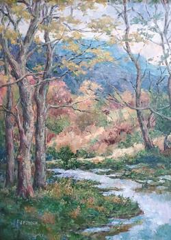 Marsh, Grandfather Mountain