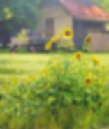 Keep On the Sunny Side 20x24.JPG