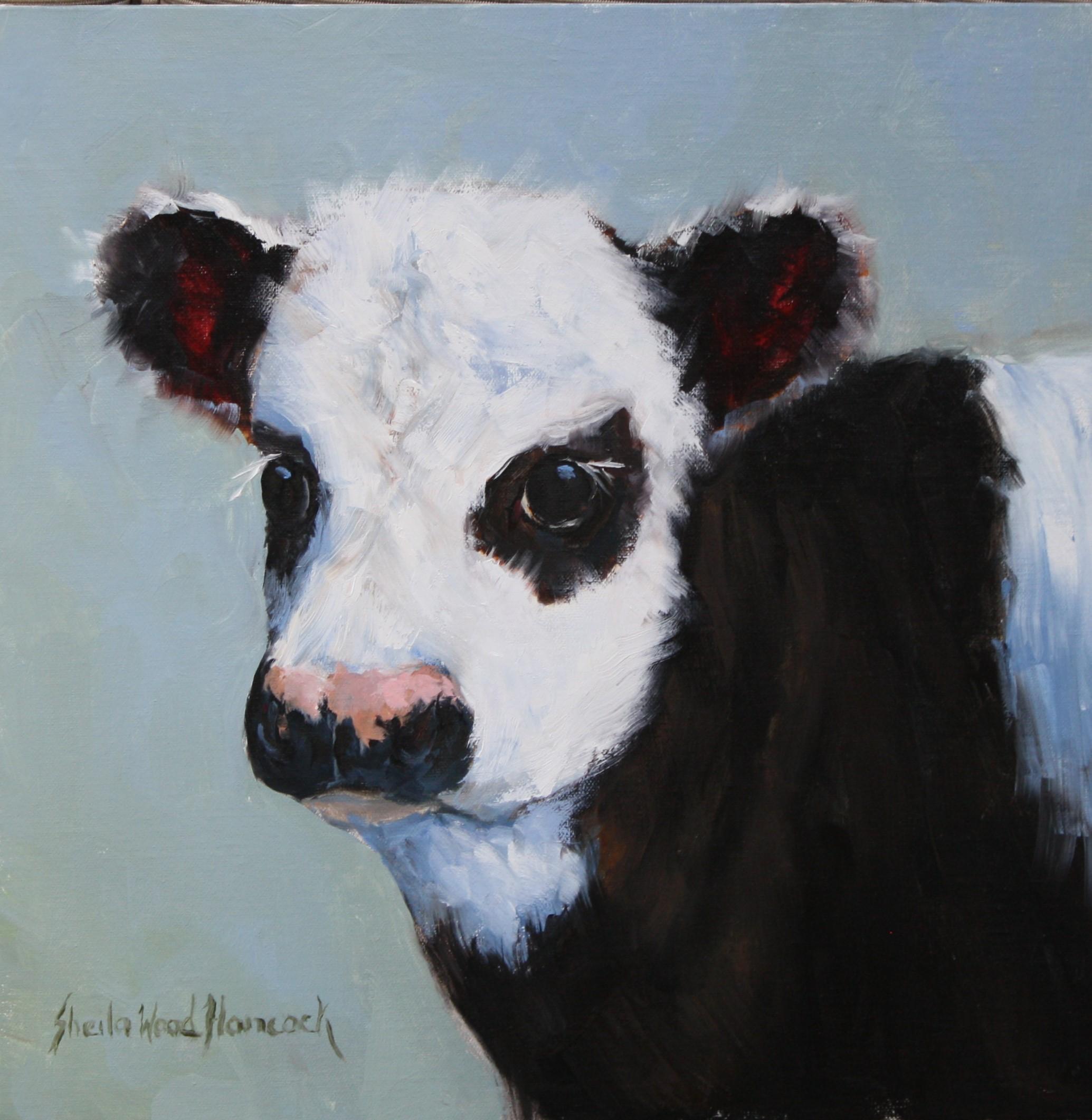 Gentle Calf