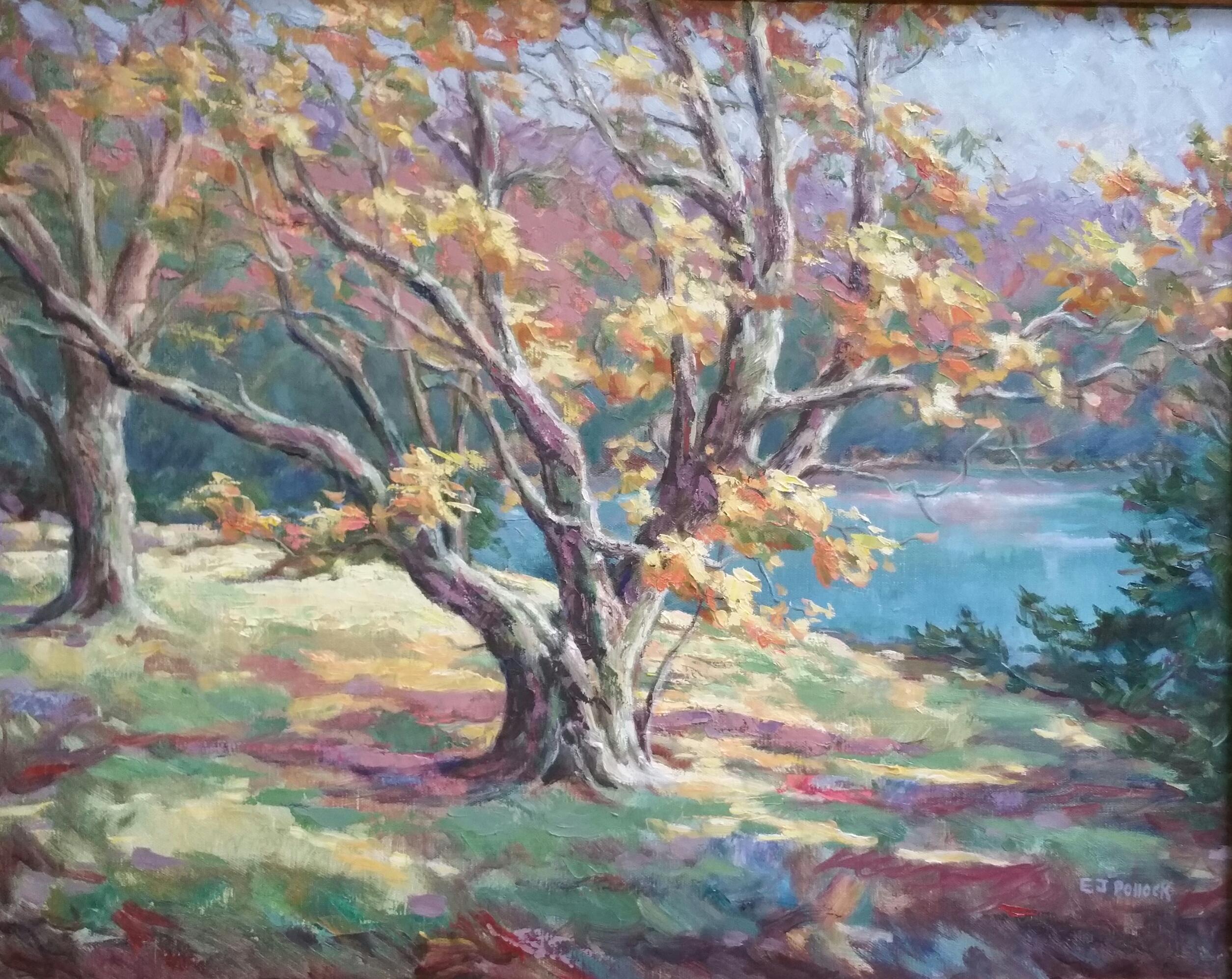 Maple at Bass Lake
