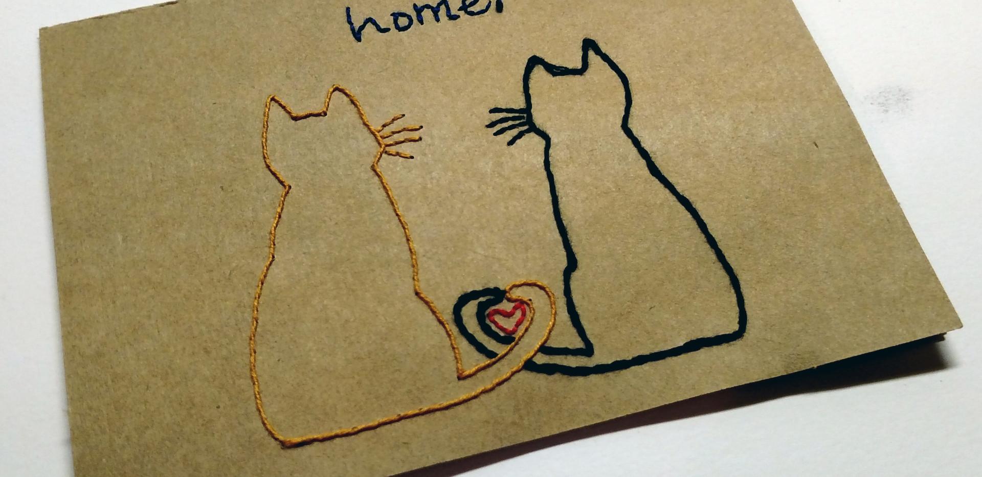 Kitty home