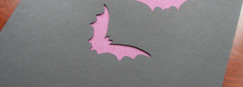 bats 3.JPG