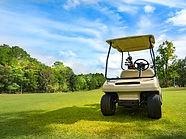 Carro de golf imagen.jpg