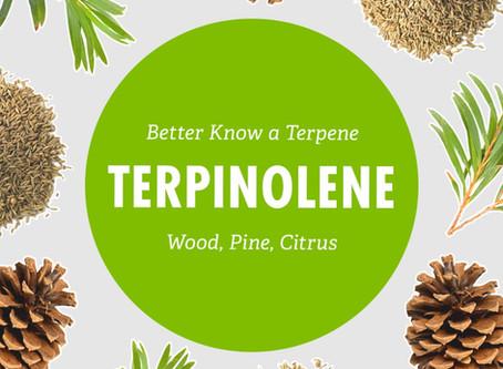 Better Know a Terpene: Terpinolene