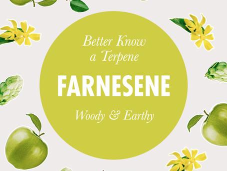 Better Know a Terpene: Farnesene