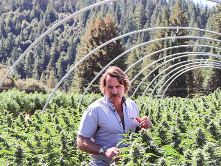 Chemistry Visits: Croft Farms Cultivates the Good Vibes