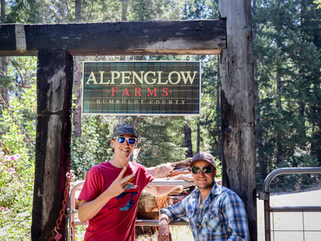 Chemistry Visits: Getting Our Hands Dirty with Alpenglow Farms