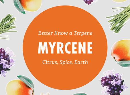 Better Know a Terpene: Myrcene