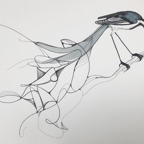 White Wagtail - $75