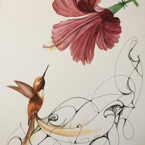 Hummingbird & Hibiscus - $100