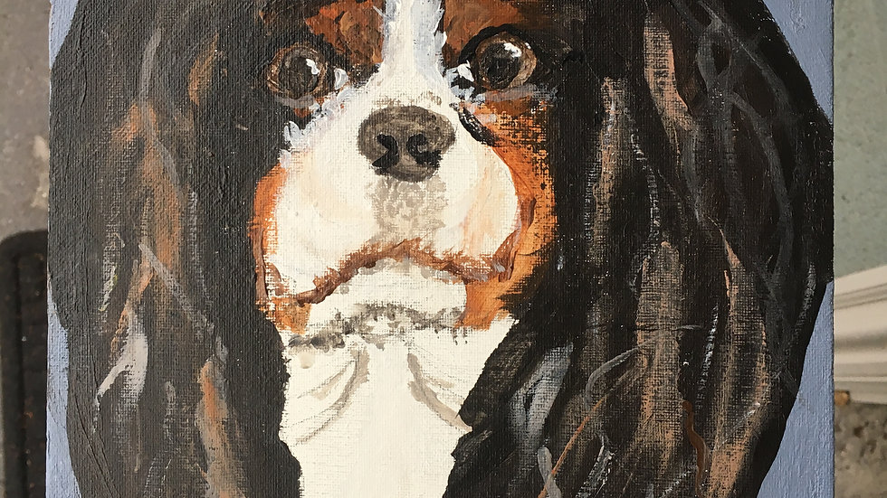 Paint Your Favorite Pet, June 28th-July 1st, ages 8-14